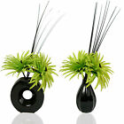 Two Phoenix Lime Green Silk Artificial Flower Arrangements in Vases With Fillers