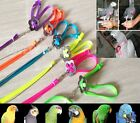 Внешний вид - Adjustable Parrot/Bird Harness Multicolored