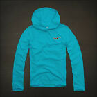 HOLLISTER  MENS HOODIE TEE NEW ARROW POINT SIZE XL