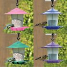 GARDEN HANGING BIRD FEEDING LANTERN BIRD SEED FOOD AND NUT FEEDER STATION