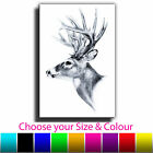 Abstract Stag Head Single Canvas Wall Art Picture Print 8O
