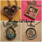 Mothers Day Floating Glass Locket Necklace Pendant & Chain Set