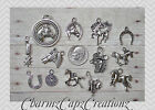 13 pc Horses Silver Charm Set Lot Collection / Horse Country Western Equestrian