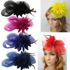 Hair Accessories Hairpin Clip Flower Feather Women Vintage Fascinator Hair band