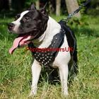 Handmade Dog Harness with Glancing Pyramids | Leather Dog Harness, Soft Padded