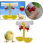 Chicken Drinker Cups Poultry Chick Drinking Fountain Pigeon Bird Watering Cup