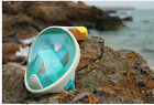 FULL FACE SILICON SNORKEL MASK,  Many colors!