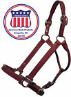 Congress leather Blank Show Halter 9603