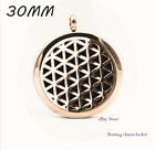 1P Stainless Steel Aromatherapy Diffuser Locket Pendant no Necklace free shippin
