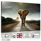 LARGE BROWN ELEPHANT MODERN LANDSCAPE STRETCHED CANVAS WALL ART PRINTS PICTURES