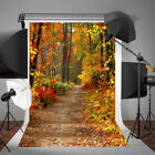 2 Size Photography Vinyl Background Autumn Fall Deciduous Forest Backdrop Props