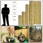 3FT 4FT 5FT 6FT 7FT HEAVY DUTY BAMBOO GARDEN CANES STRONG THICK PLANT FENCE NEW