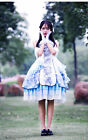 New Chinese White Tiger Vintage Dress  Lolita Cosplay Costume Classical Dress