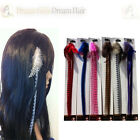 Beautiful Grizzly Feather Clip in Hair Extensions Red Pink Blue Brown Black Whit