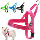 Reflective Nylon No Pull Dog Harness Quick Fit For Dog Training Walking XXS-L