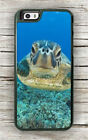 TURTLE SEA LIFE CLOSE UP #2 CASE FOR iPHONE 6 6s or 6 6s PLUS -esd5X