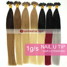 16-22inch Pre Bonded Keratin Glue Nail/U Tip Remy Human Hair Extensions 1g/s 50S