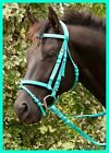 TEAL GREEN NYLON WEB HORSE BRIDLE & REINS *Mini *Shetland *Pony *Cob *Full
