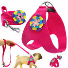 Hot Pink Dog Harness and Leads Step-in Pet Puppy Vest Soft Suede Leather 4 Sizes