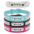 Rhinestone Personalised Dog Collars Engraved Pet Cat Puppy ID Name Collar XS-L