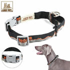 LOSY PET Nylon Martingale Dog Pet Collar Adjustable - No Slip Training- Quality