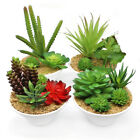 Artificial Succulent Plants Mini Potted Fake Plastic Green Plants for Home Decor