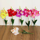 Artificial Butterfly Orchid Silk Flower Home Wedding Phalaenopsis Bouquet GOOD