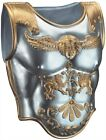 Roman Chest Armor Adult 2 Pc Silver & Gold Plastic Or Foam Costume Accessory OS