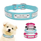 Suede Faux Leather Dog Collar Bling Personalised Collar with Free Engraved XS-L