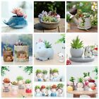 US Home Garden Decor Various Plant Flower Bonsai Planter Pot Box Bed Ornaments