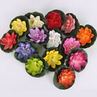 5pc Artificial Lotus, Water Lily Floating Flower Pond Fish Tank Plant Yard Decor