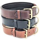 "Genuine LEATHER Dog Collar 1.5"" Width Padded HEAVY DUTY Medium & Large Pet M- XL"
