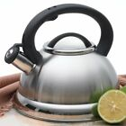 alexa 3 qt whistling tea kettle