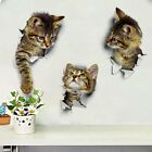 Home Decor Furniture Tampa Removable DIY 3D Cat Bathroom Toilet Wall Stickers Decals Vinyl Mural Home Decor Catalogue For Home Decor