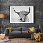 EP_ Cow Broadside Prints Wall Art Painting Pictures for Living Room Home Decor Reli
