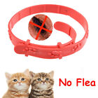 Protection Pet Cat Dog Neck Ring Anti Flea Mite Acari Tick Louse Collar Red