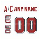 Florida Panthers 1993-98 White Jersey Customized Number Kit un-stitched $34.99 USD on eBay