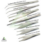 Dressing Tissue Tweezers Cotton & Dressing Forceps Serrated Tip Surgical Pliers