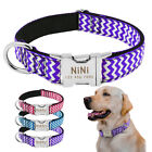 Heavy Duty Buckle Engrave Nameplate Personalised Dog Collar Nylon Collar M L