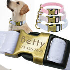 Personalised Nylon Dog Collar Optional Engraved Free Puppy Pet ID Name Plate