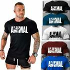 2019 New Men's Bodybuilding T-shirt Animal Fitness Cotton O-Neck Gym Muscle Tee image