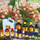 4-oz-Essential-Oils-BUY-4-GET-1-FREE-Many-to-Choose-From-100-PURE