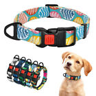 Nylon Puppy Small Pet Dog Collar with Locable Buckle for Beagle French Bulldog
