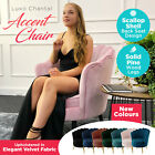 VELVET Scallop Armchair Accent Chair Couch Single Seat Occasional Sofa Lounge