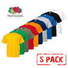 5 PACK MEN'S FRUIT OF THE LOOM PLAIN 100% COTTON BLANK T SHIRT TEE'S T-SHIRT NEW