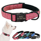 Nylon Dog Collar Personalized Webbing Pet Dog Collar with Heavy Duty Clip Buckle