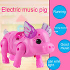Kid Toys Electric Walking Singing Musical Light Pig Toy with Leash Interactive