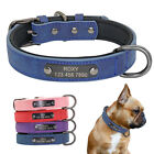 Soft Leather Personalised Dog Collar Pet Puppy Kitten ID Name Tag Collar Engrave