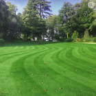 Hardwearing Grass Seed Mix for Lawns