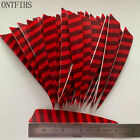 50PCS 5inch Striped Red Shield Vanes Fletches Feathers Fletching RW LW